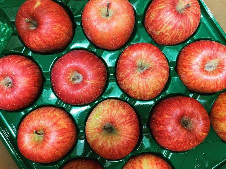 工藤さん☆おいしいりんごをありがとう